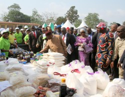 HE at the Made in Abia Fair